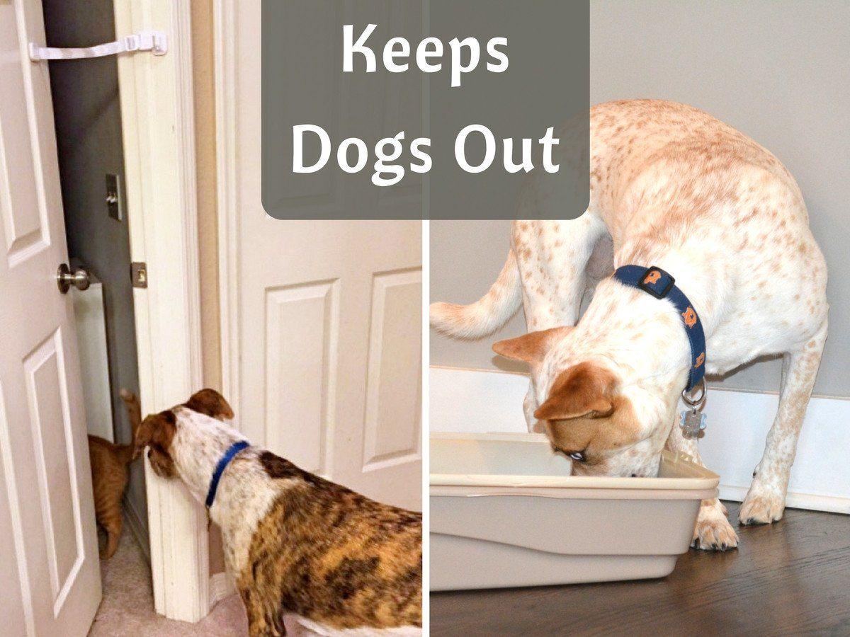 Door buddy door latch plus door stopper to dog proof