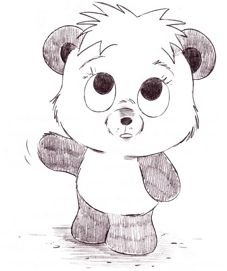 Christopher Hart Cartoon Animals Cute Panda Bear My Drawing Cute Cartoon Drawings Cute Animal Drawings Cartoon Drawings Of Animals