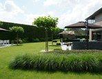 Een strakke tuin herken je aan de zuivere lijnen en de grote, groene vlakken met hier en daar een blikvanger. De stijl is sober met veel aandacht voor structuur en architectuur. Ook een kleine tuin kan strak zijn. Beperk je tot één plantenborde...