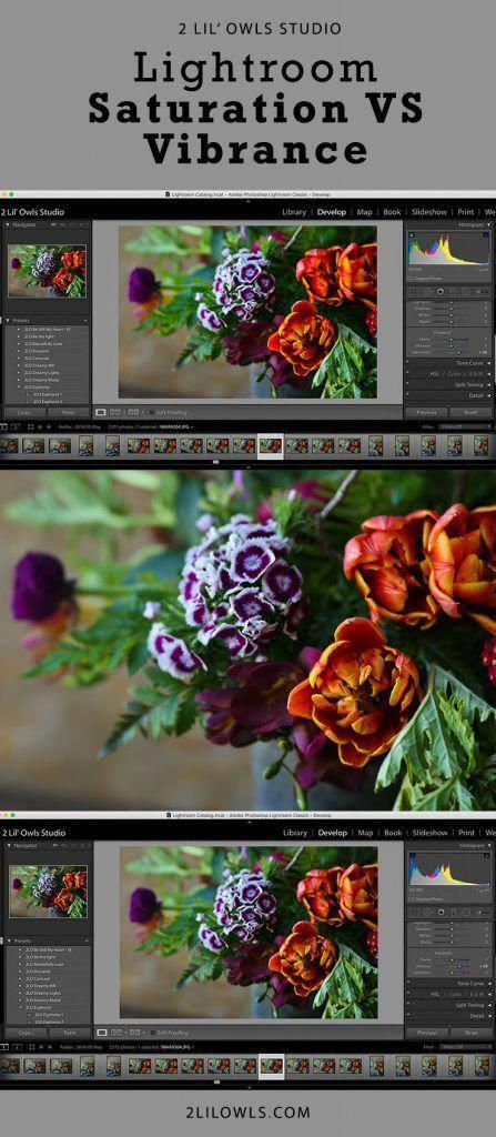 In this video I am going to go over the difference between Saturation and Vibrance in Lightroom These two settings are very similar yet give your photo a completely diffe...