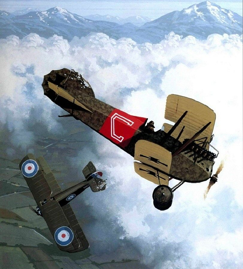 Phonix DI of the Flik 60J collided with a Sopwith Camel