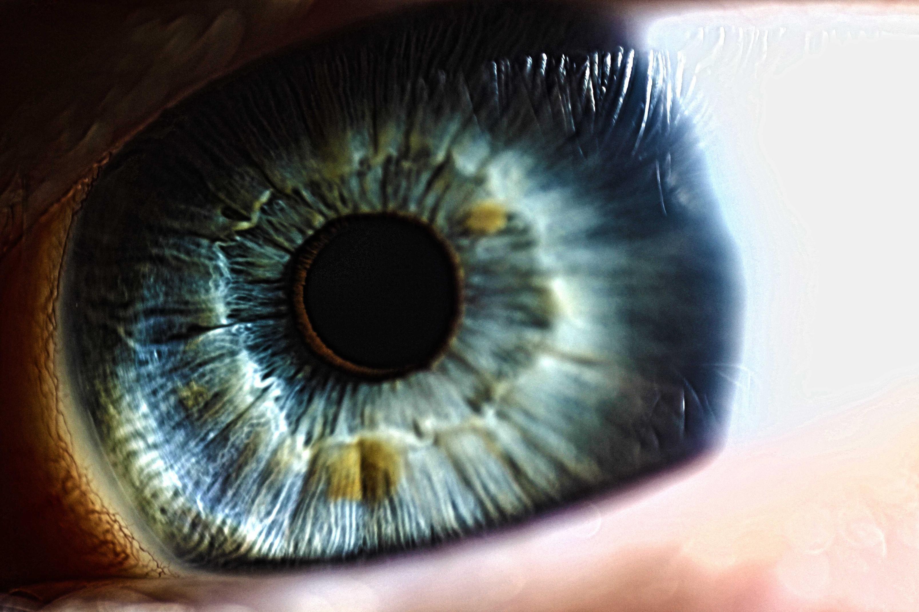 Eye Lenses Hd Png Eye 4 Png 320 320 Eye Art Eye Drawing