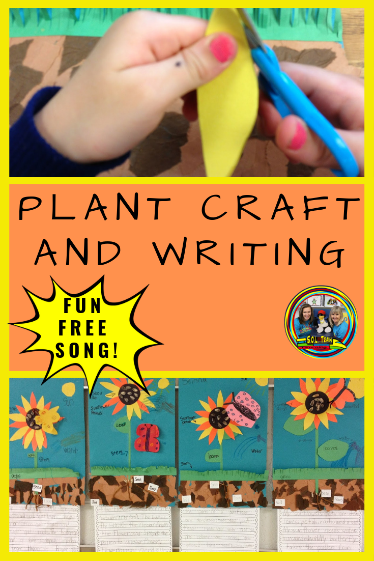 Plant Activity and Plant FREEBIE | Science | Teaching