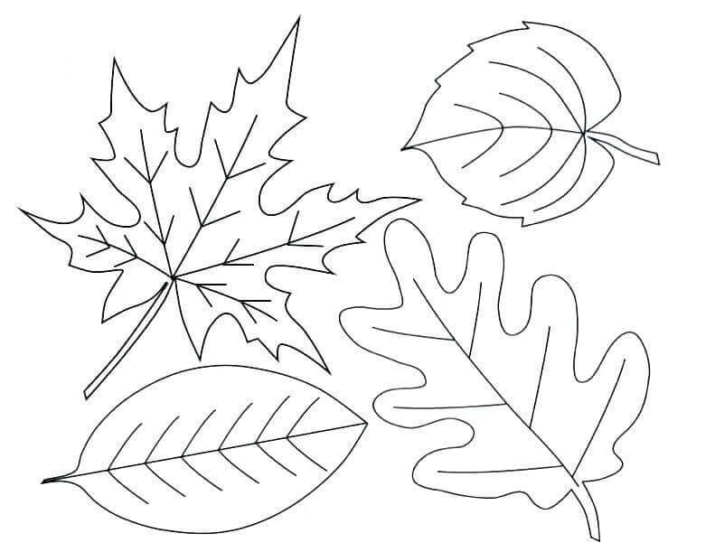 Free Printable Fall Leaves Coloring Pages Fall Coloring Pages