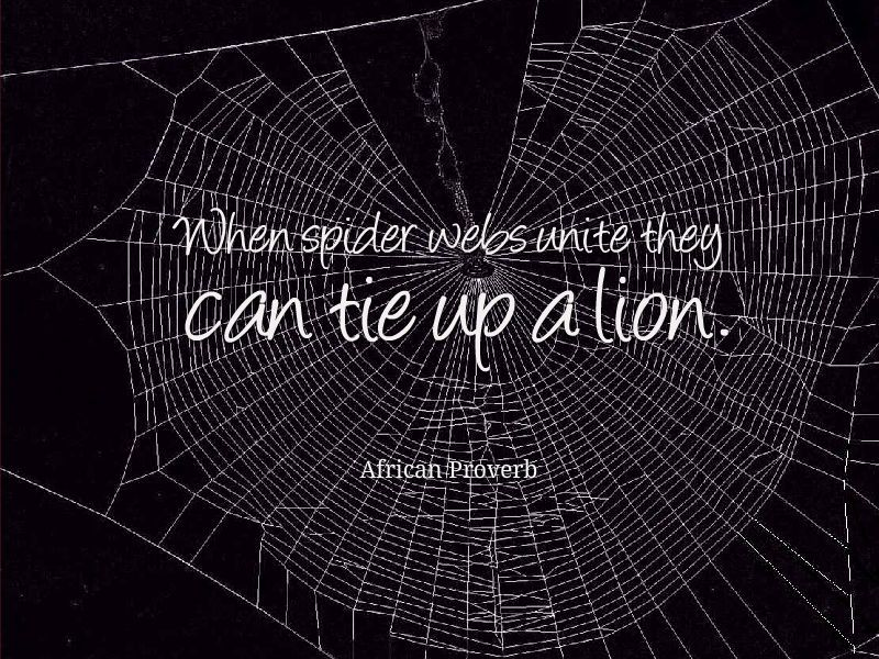 African Proverb, When Spider Webs Unite They Can Tie Up A
