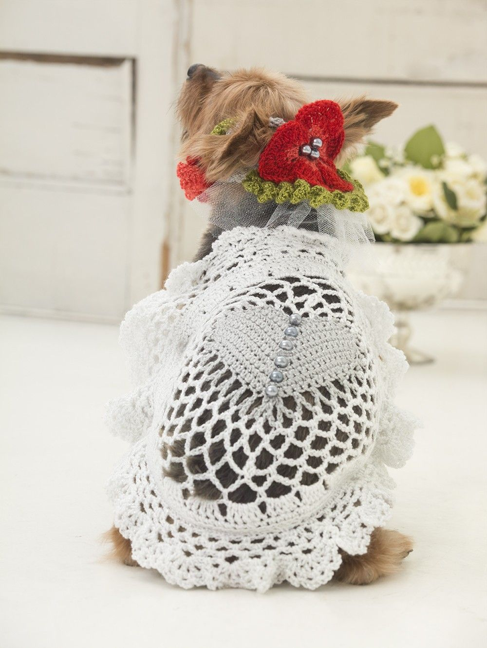 Say Woof To The Dress (Crochet) | dogs! and other animals | Pinterest