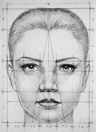 Image result for drawing face proportions