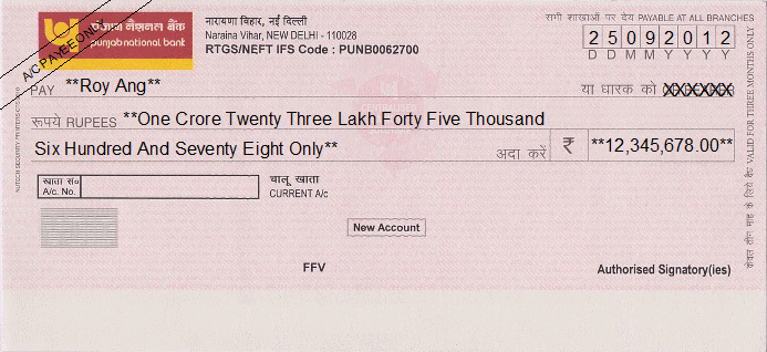 Printed Cheque of Punjab National Bank India | party detail