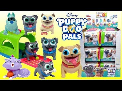 Puppy Dog Pals Captain Rolly The Coolest Dogs In Town Lara Pollard Youtube Pet Travel Dogs And Puppies Disney Junior