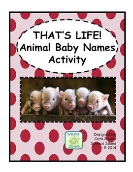 UPDATED April 2015! Whats more adorable than animal babies? Thats right, NOTHING! Students will learn the names of baby animals by matching animal names and pictures with the baby names. Two worksheets are also included to reinforce the vocabulary. Did you know that a baby platypus is a puggle?
