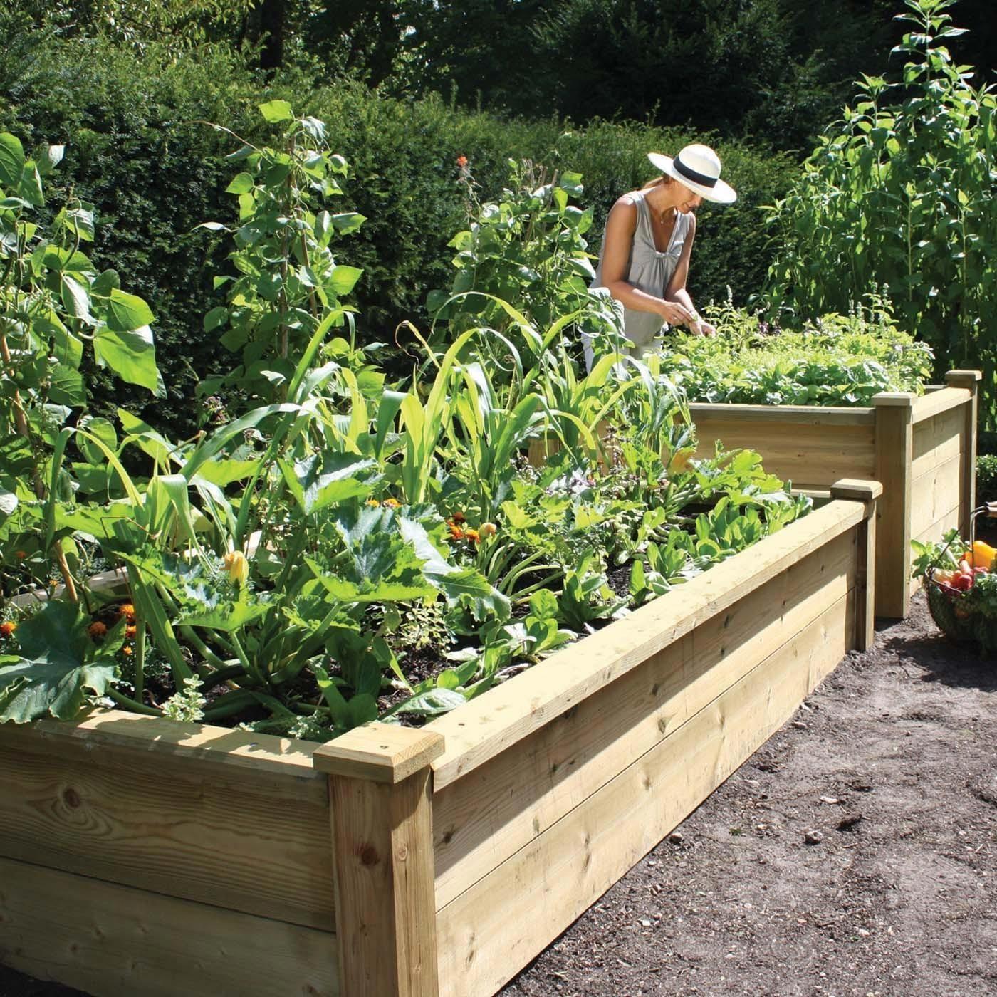 Superior Wooden Raised Bed Kits Harrod Horticultural Uk