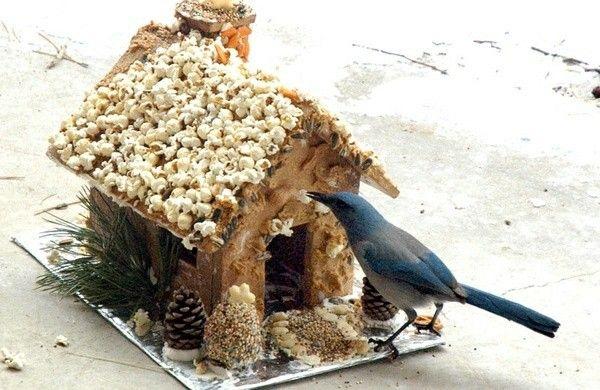 futterh uschen f r v gel selbst bauen basteln pinterest vogelhaus bauen vogelh user und. Black Bedroom Furniture Sets. Home Design Ideas