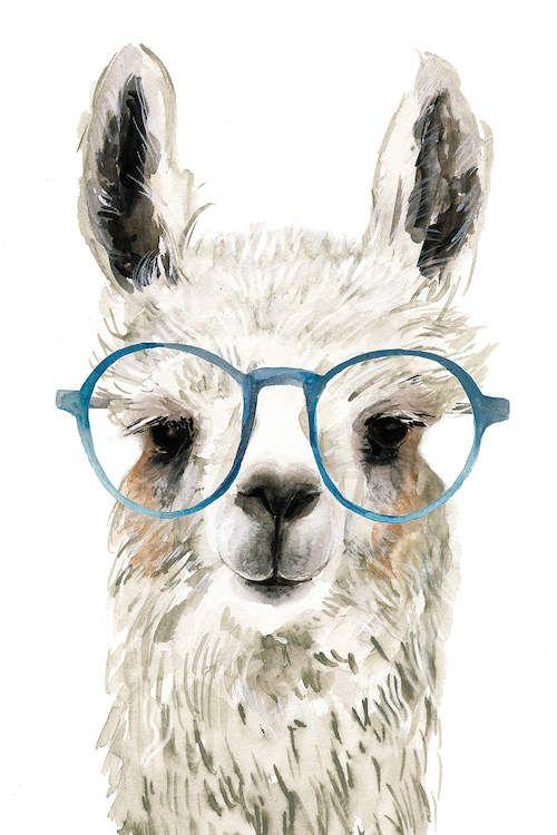Hip Llama Ii Canvas Print By Victoria Borges Dessin De Lama
