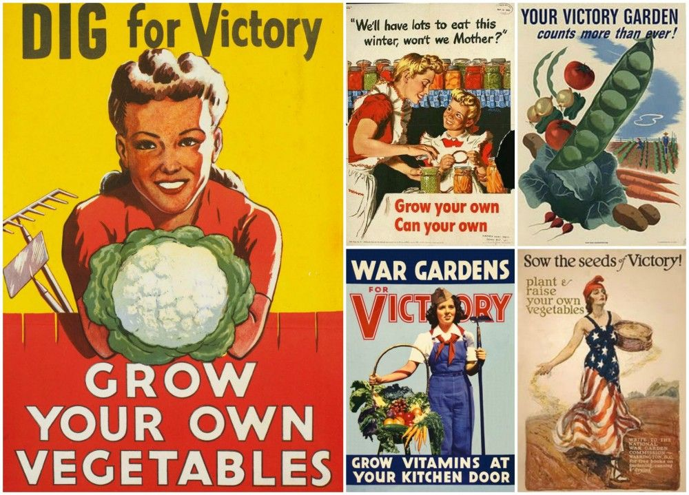 Gardening for Troubled Times (Modern Victory Gardens)