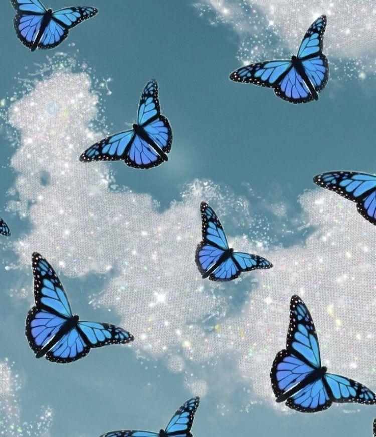 Girls Mode Asf On Twitter Blue Butterfly Wallpaper Cute Pastel Wallpaper Blue Aesthetic Pastel Blue butterfly wallpaper aesthetic