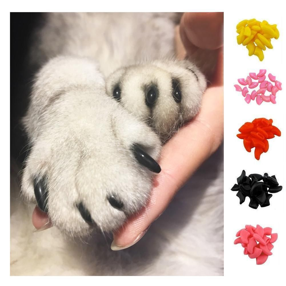 0.99 GBP - 20Pcs Cat Nail Covers Pet Claw Paws Caps Adhesive Glue ...