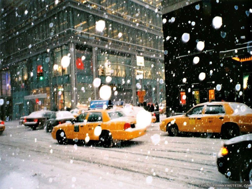 New York City Christmas Pics