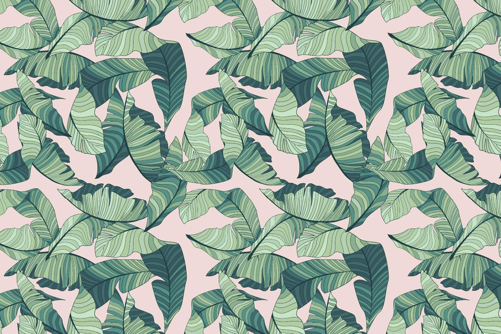 Pin By Marie Jane Minaj On Tropical Wallpaper Tropical Wallpaper Leaf Wallpaper Jungle Wallpaper Tropic flamingo cartoon seamless organic vector background with nature foliage textures and dark grunge items whales in waves. tropical wallpaper leaf wallpaper