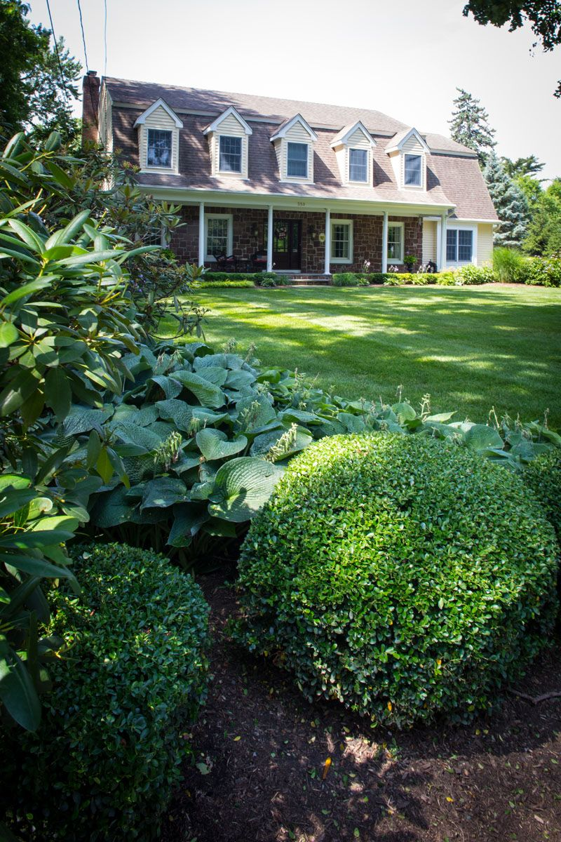 Professional lawn management and shrub care in Bergen