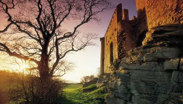 The ruins of Craigmillar Castle and the branches of a tree, illuminated by the fading sunlight