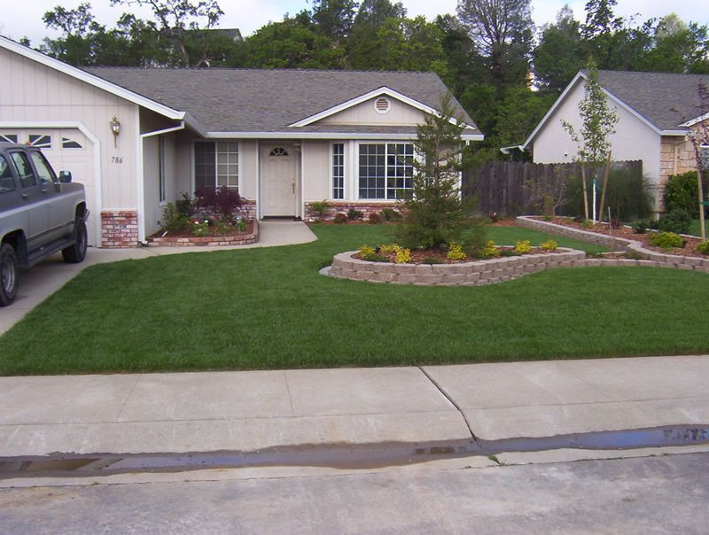Fresh Tiny Front Yard Landscaping