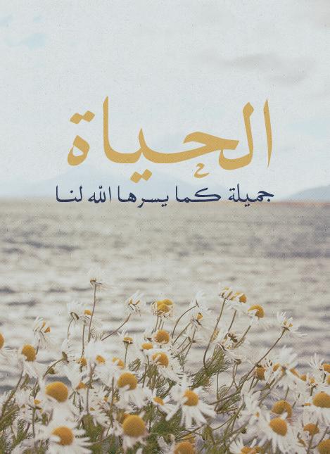 Pin By Hadia Ahmed On احكي عربي Eyeball Art Islamic Images Beautiful Arabic Words