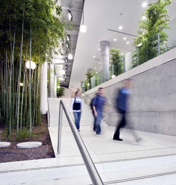 Indoor Garden Office Gardens Atrium