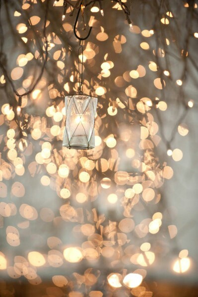 there's something quite magical about fairy lights. romance and dreamy...
