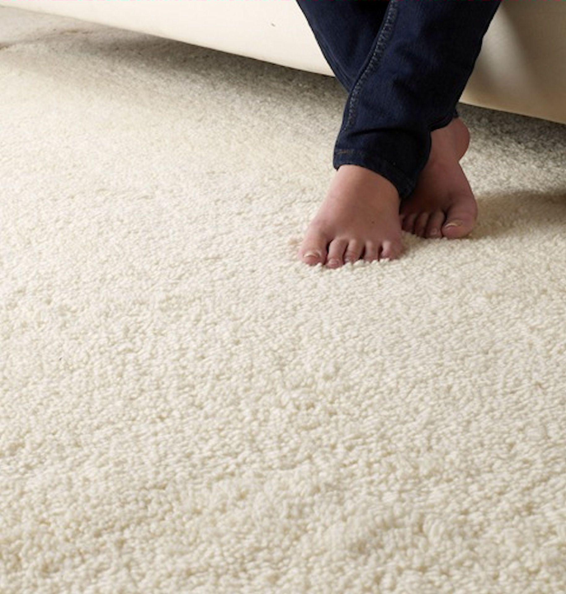Sumptuous deep 4% wool Shag Pile carpet  Carpet colors, Bedroom