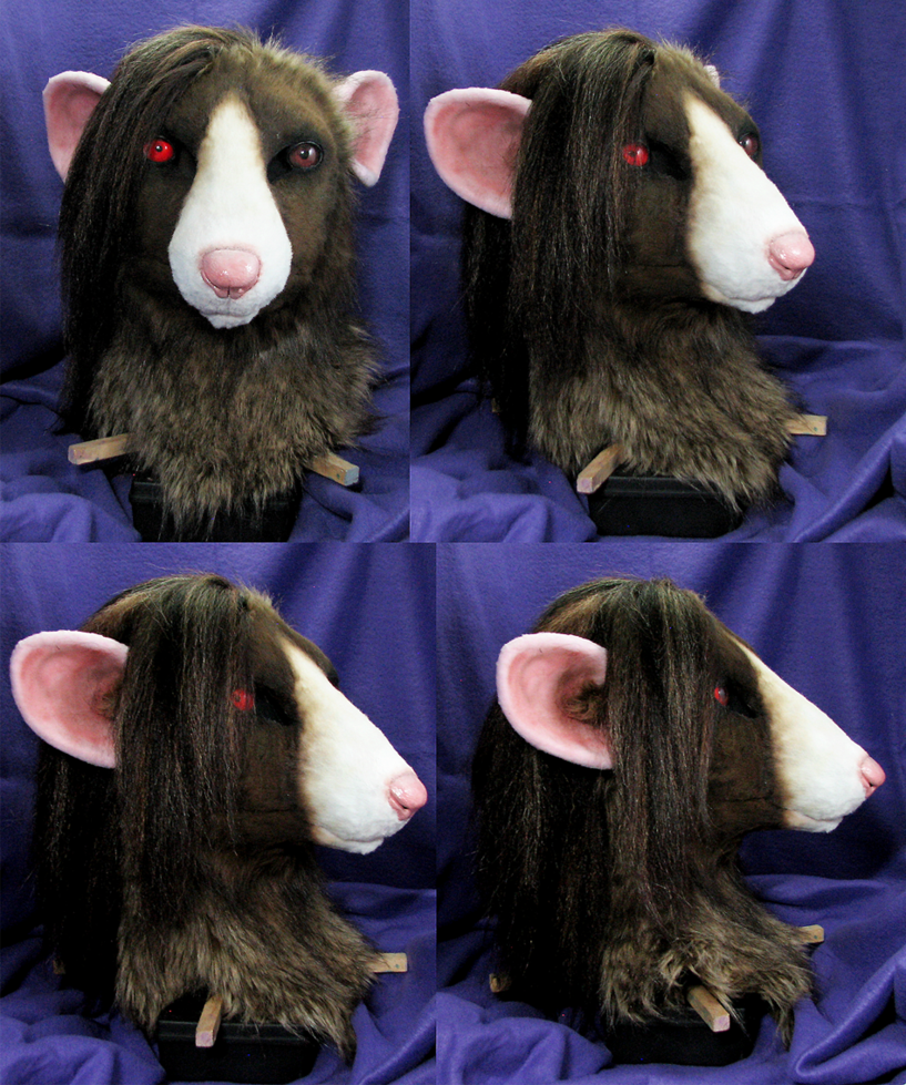 Link I 39 D Like To Get A Pic Of The Whole Suit But I Dont Have A Model It Fits Rat Head Rats Animals