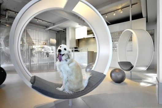 Unleashed Dog Spa Square One Interiors With Images Dog Spa