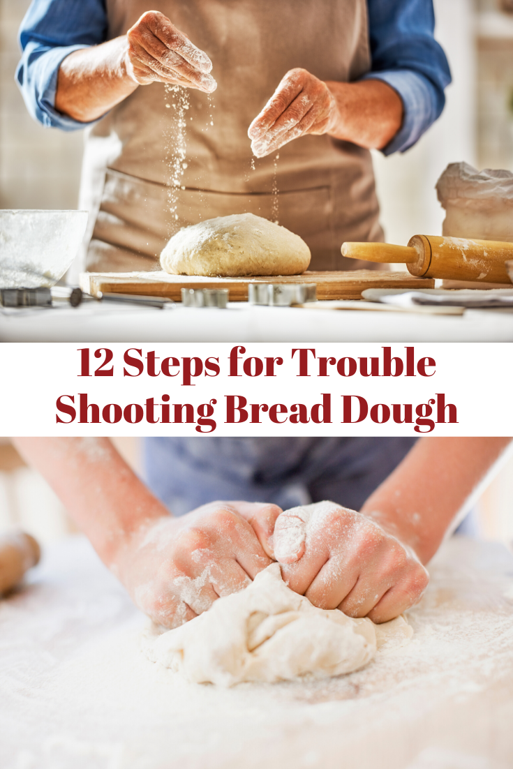 12 Steps For Trouble Shooting Bread Dough With Images Bread
