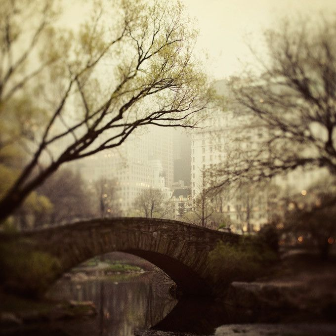 bridge over the pond in Central Park by Eye Poetry