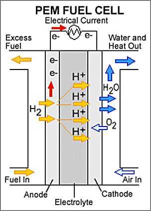 Hydrogen Fuel Cell Working Diagrams: Proton Exchange