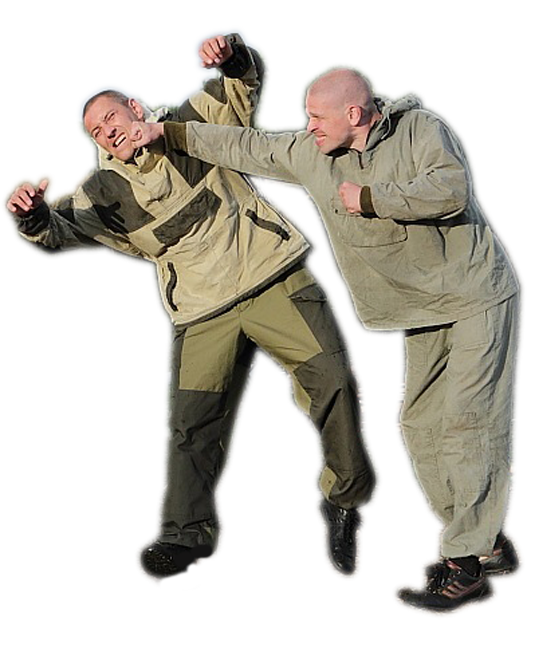 рукопашный бой приемы для начинающих фото как будто дома