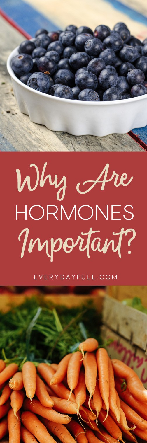 Why Are Hormones Important