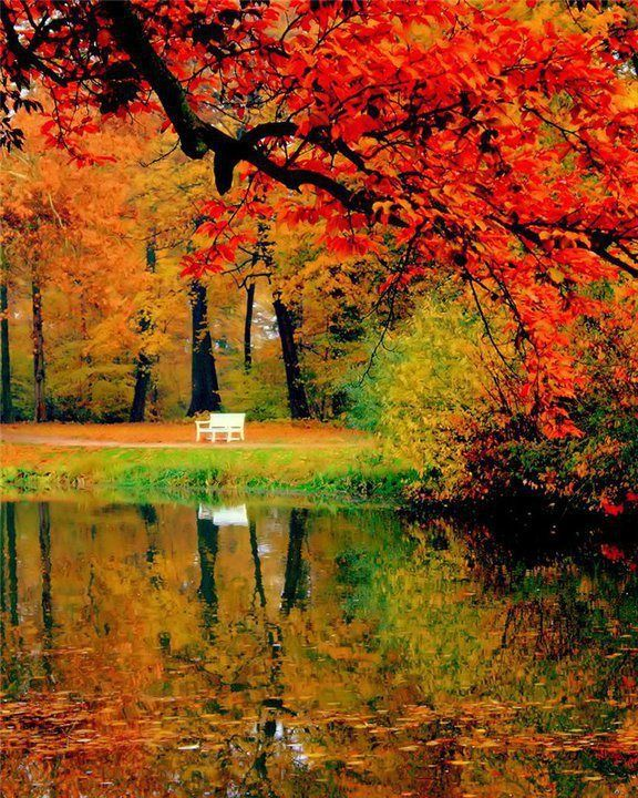 The Autumn Beauty Poem Autumn Scenery Scenery Fall Pictures