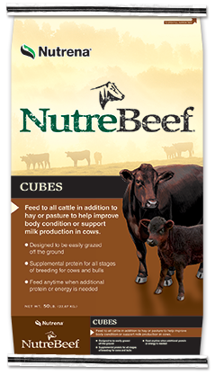 Products Beef Cattle Cattle Cubes Beef cattle