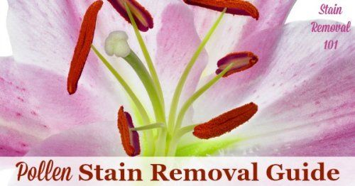 Young Living Stain Remover Carpet