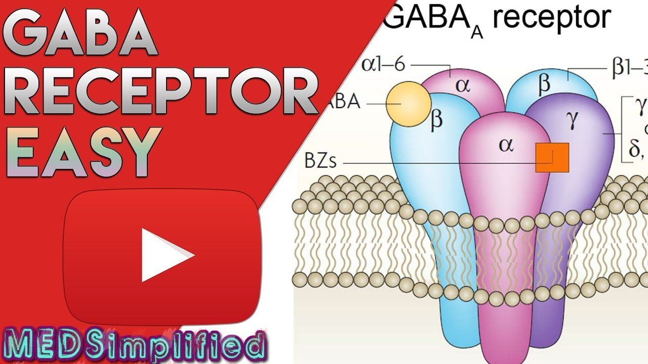 Gaba receptor bzd structure and mechanism of action