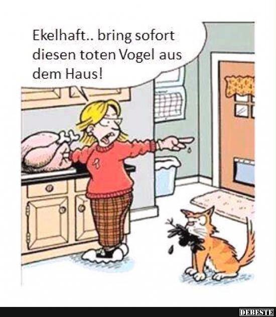 Besten Bilder, Videos und Sprüche und es kommen täglich neue lustige Facebook Bilder auf DEBESTE.DE. Hier werden täglich Witze und Sprüche gepostet! #veganhumor