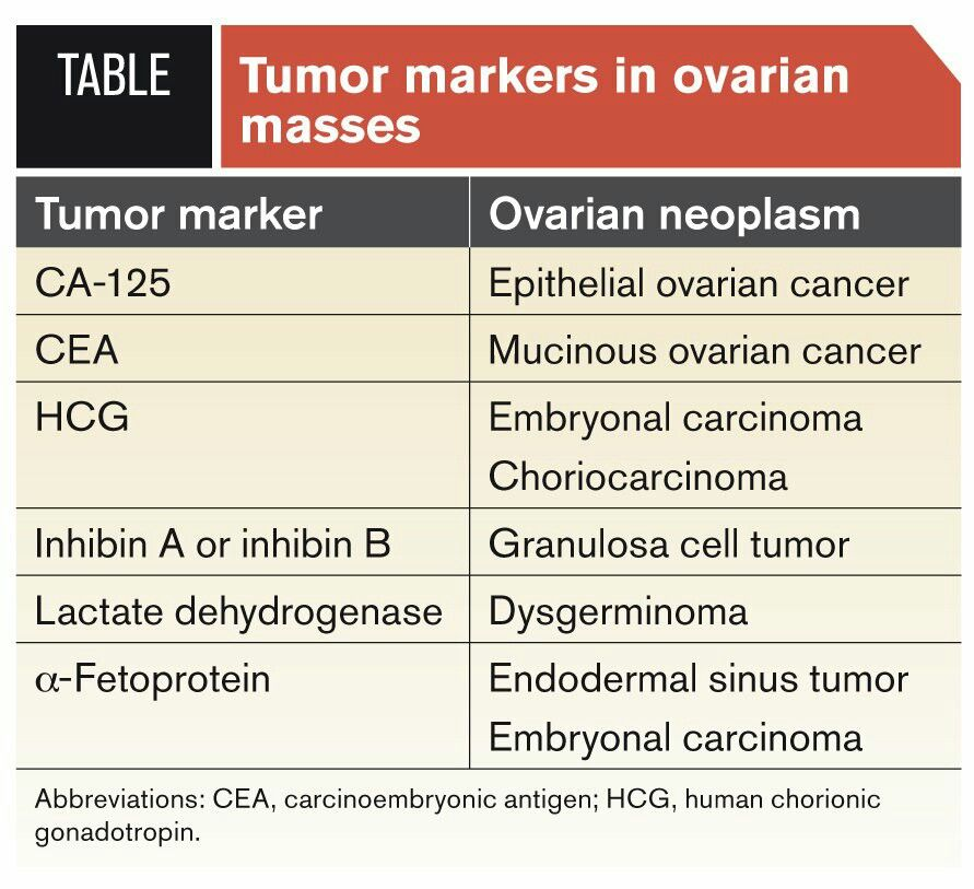 Pin On Tumor Markers