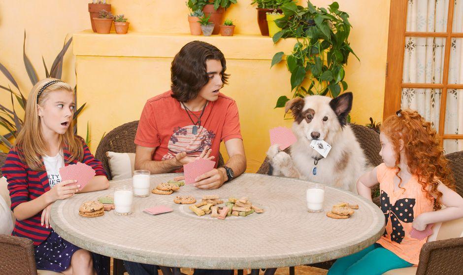 Tyler e Avery são dois irmãos que se odiavam, mas passaram a se dar bem quando ganharam um novo cachorro.