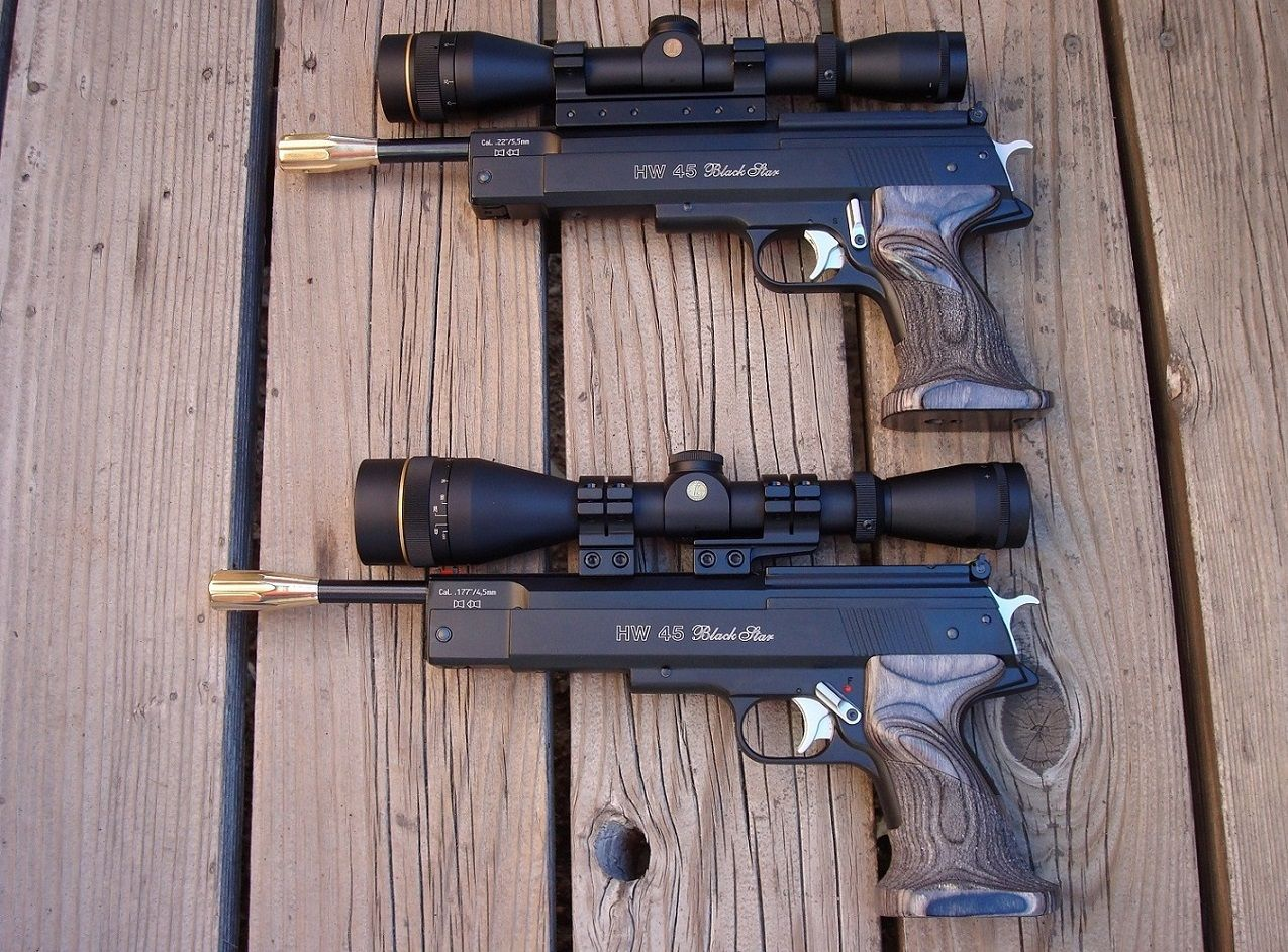 HW 45s:  22 and  177, both with Lothar Walther barrels and Leupold