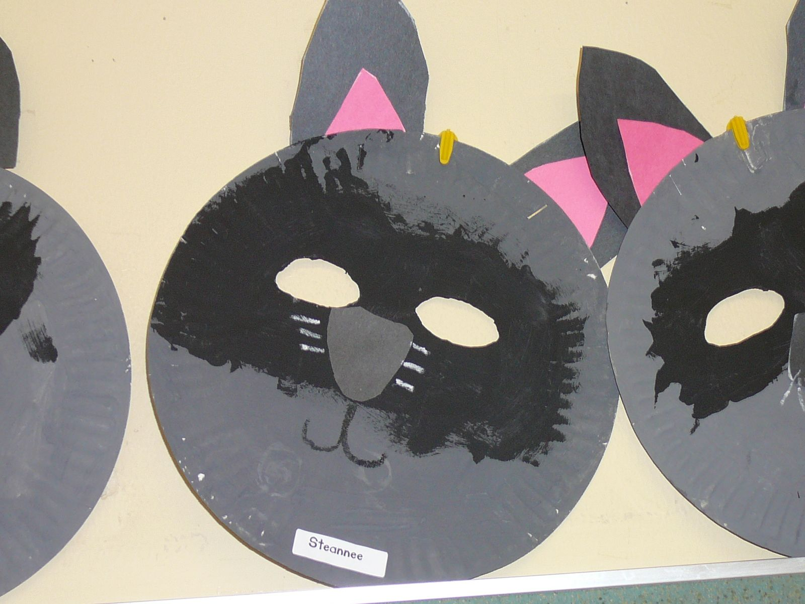 Raccoon Masks