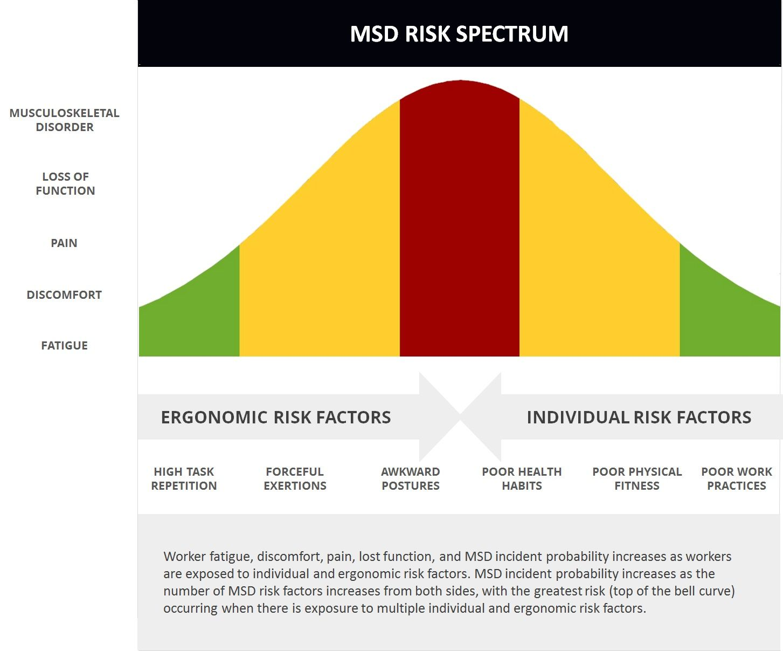 Musculoskeletal Disorder (MSD) Risk Spectrum Risk, Msd