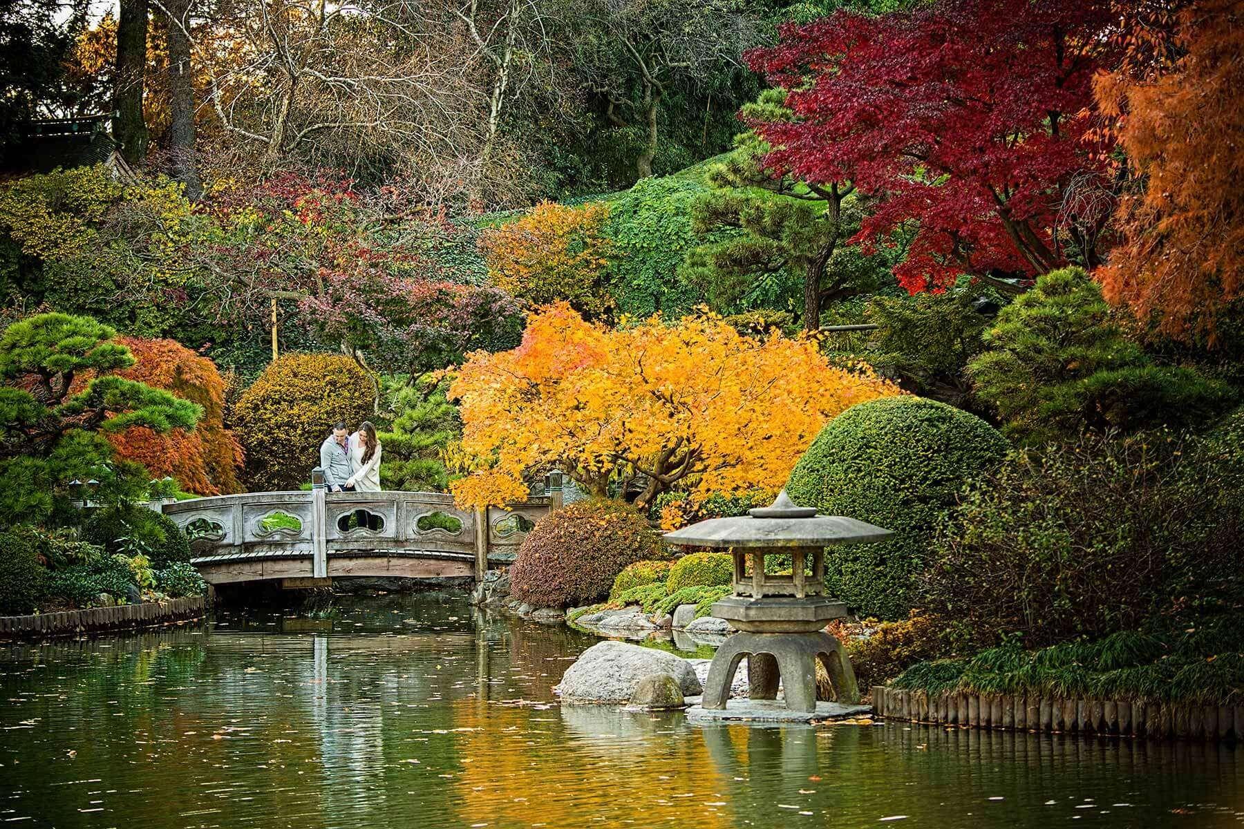 Pin by sevarine Bantin on Beautiful Garden Brooklyn