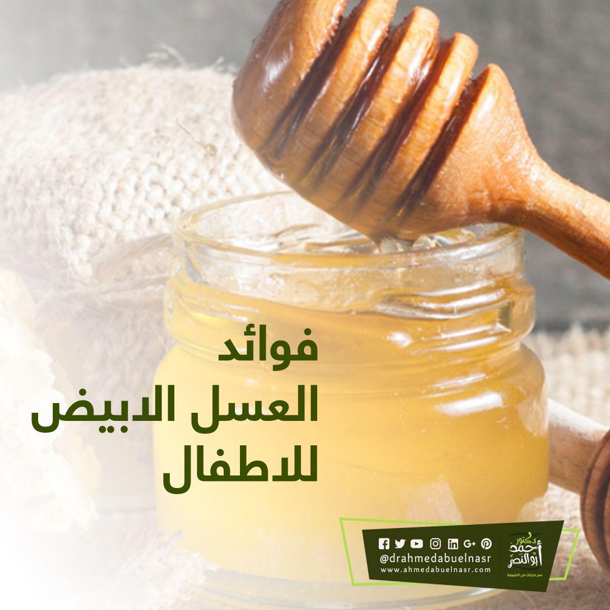 فوائد العسل الابيض للاطفال Food Honey Condiments