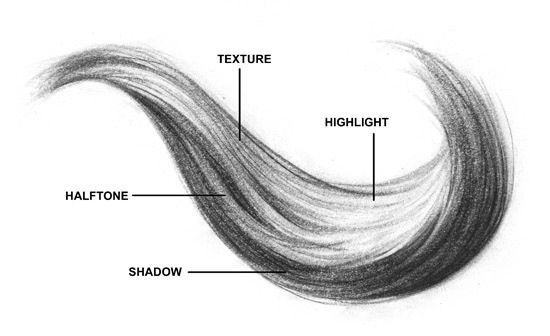 Highlights Shadows Textures And Tone How To Draw Hair Drawings Drawing Techniques
