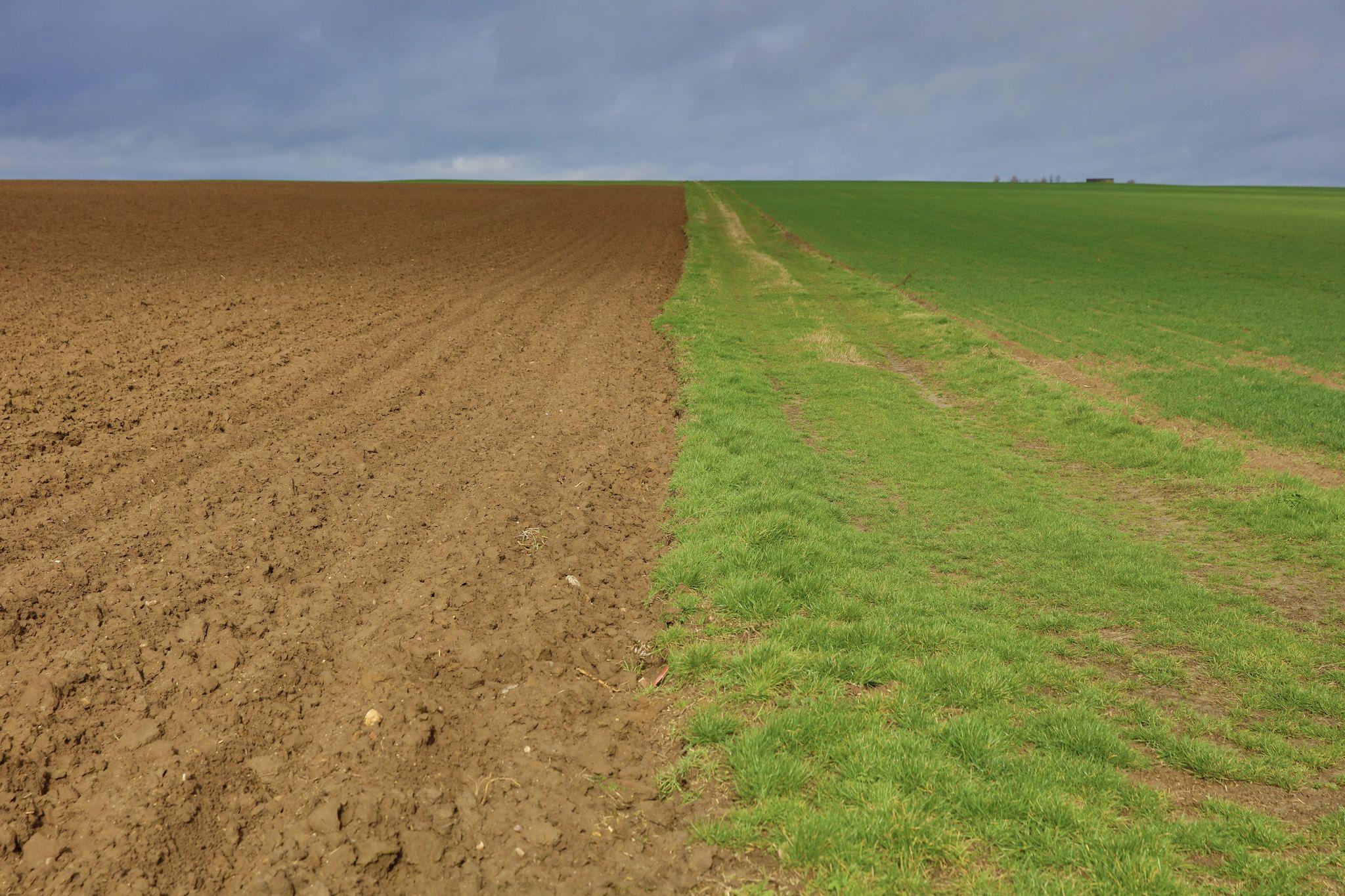 Appel A Candidatures Francais Devenir Associes D Une Exploitation Agricole Collaborative Terrain Agricole Appel A Candidature France
